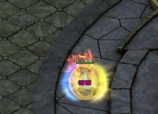 haosf玩家对英雄的选择与使用
