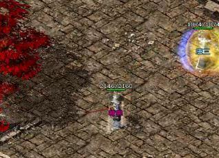 中变传说玩家可以用卡片杀死月蜘蛛